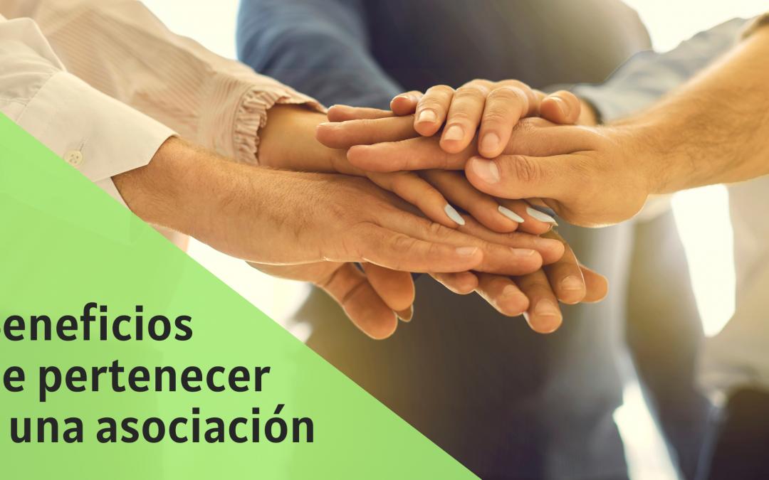 Beneficios de formar parte de una asociación sectorial para tu desarrollo profesional