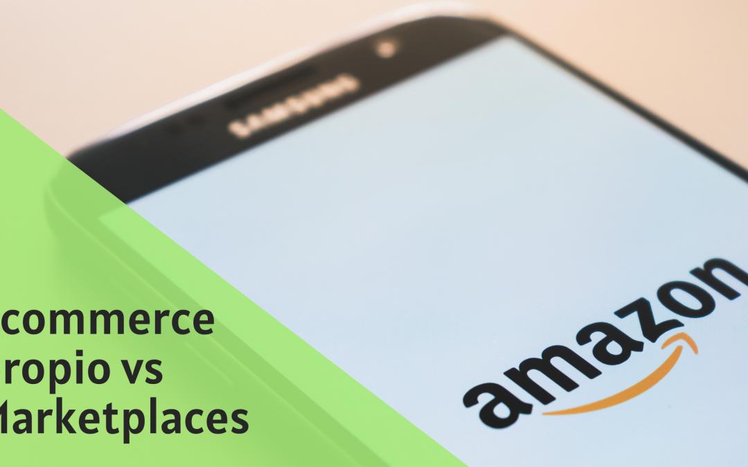 E-commerce propio vs Marketplaces